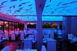 Plafond tendu lumineux à changement de couleur pour le restaurant Auberge de Port à Bandol près de Toulon